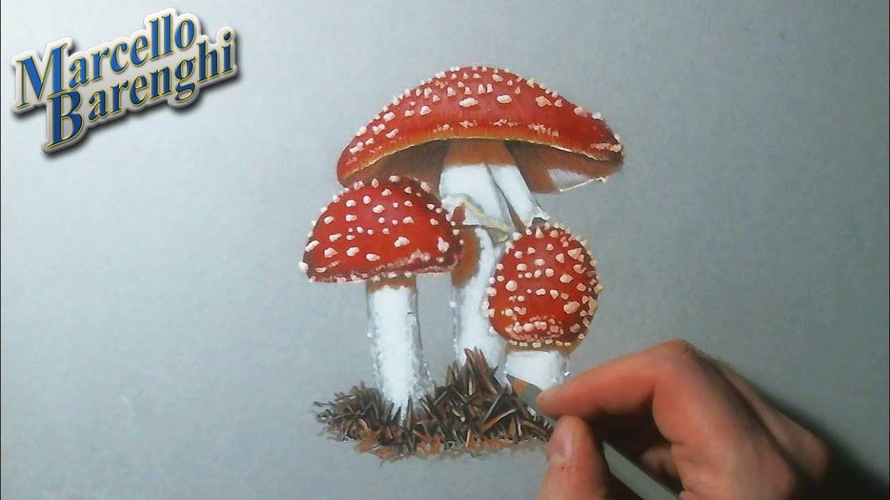 how to draw mushrooms with an occiliscope