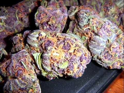 SchoolBoy Q - Bet I Got Some Weed