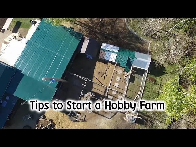 Tips for Starting a Hobby Farm