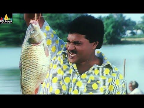 Sunil Best Comedy Scenes Back to Back | Telugu Movie Comedy | Vol 1 | Sri Balaji Video
