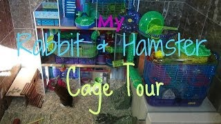My Rabbit/hamster Cage Tours!