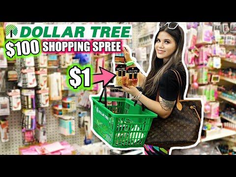 DOLLAR TREE GIRLY $100 SHOPPING SPREE! *MAKEUP HEAVEN*