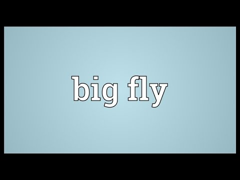 Big fly Meaning