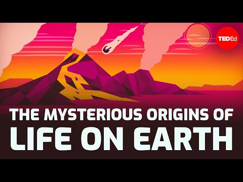 Video image: The mysterious origins of life on Earth - Luka Seamus Wright