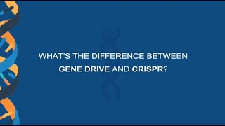 What's the difference between gene drive and CRISPR?