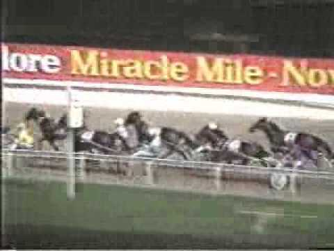 1988 Miracle Mile Winner Our Maestro