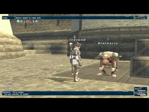 Final Fantasy XI FFXI BRD99WHM49 BRD Bard Ireland Bastok Markets [S] Trading Wrong Item 04.03.17