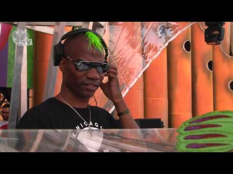 Tomorrowland 2013 - Green Velvet