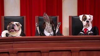 Fowler v. United States: Oral Argument - March 29, 2011