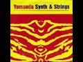 Miniature de la vidéo de la chanson Synth & Strings