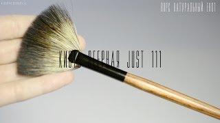 видео Кисти для макияжа: какая для чего необходима?