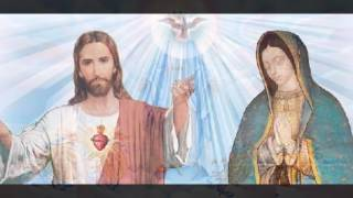 MI VIRGEN BELLA | Amor Eterno | Vers. Estudiantina | Canto Mariano | Divina Misericordia TV