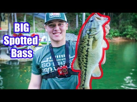 The HARDEST FIGHTING BASS I Have EVER CAUGHT!!|Fishing Lake Lanier