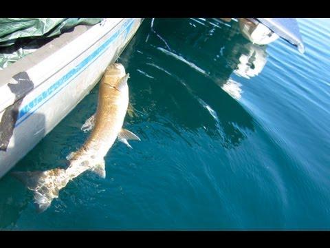 Redfish Lake Idaho, 4 Days In Rowing Canoe, Part 3 - SAIL ROW CAMP CANOE VLog 21