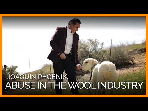 Joaquin Phoenix on Abuse in the Wool Industry and Cruelty-Free Options