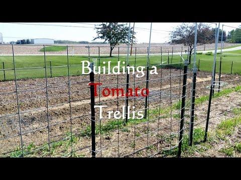 Building a Tomato Trellis
