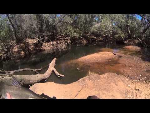 Northern Territory Fishing