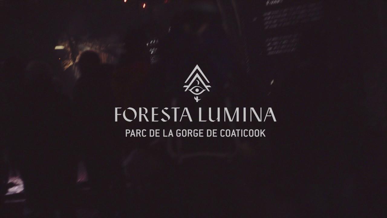 Foresta Lumina Multimedia Nighttime Experience At Parc De La Gorge De Coaticook