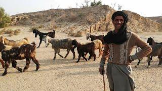 Choti Bala Village   Saraiki Language Documentary   Punjab, Pakistan