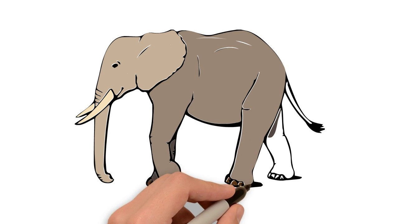 How To Draw And Color An Elephant Easiest Drawing Coloring