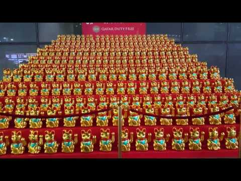 Lunar New Year Chinese Lucky Cats Biggest Collection Ever