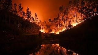 Сильнейшие лесные пожары в Португалии: 62 погибших (новости)