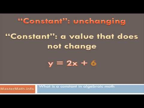 What Is a Constant in Algebraic Math?