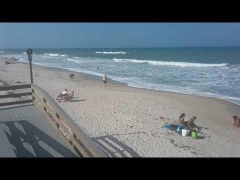 Playalinda Beach, Canaveral National Seashore