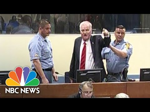 Frmr. Bosnian Serb General Ratko Mladic Has Angry Outburst Before War Crimes Conviction | NBC News
