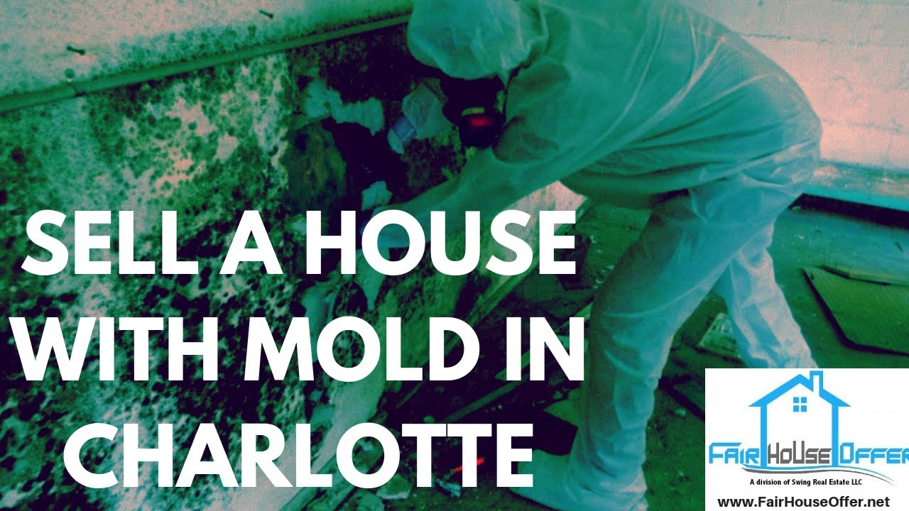 Want to Sell a House With Mold in Charlotte? Fair House Offer 704-594-1919