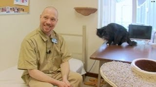 Inmates pair up with rescue cats