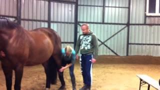 жесть.прикол прыжок на коня.