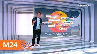 """""""Климат-контроль"""": прохладная погода ожидает москвичей в конце апреля - Москва 24"""