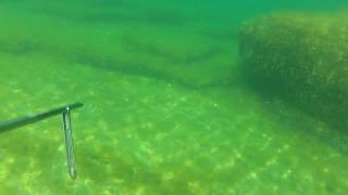 Охота выходного дня, Каспийское море(Выезжал с другом поохотиться на судака в районе мыса Токмак, но неожиданно нарвался на косяк кефали. Пришло..., 2015-08-02T05:12:42.000Z)