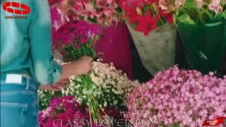 Teri Dhadkano Se Hai Zindagi Meri (Female version)   New Whatsapp Status   Classy Lover Boy °°°°°°❤️