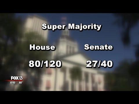 Florida\'s proposed constitutional amendments explained: Amendment 5