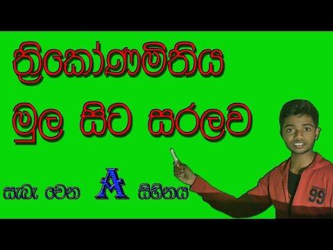 Trigonometry of Ordinary level explain in sinhala language #Maths lessons of O/L sinhala Qut show