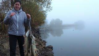 ЗВЕРСКИЙ ЖОР ЩУКИ | наша лучшая рыбалка на щуку за все года ловли щуки