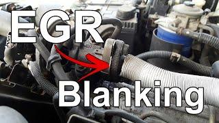 EGR Blanking | Fast Rust Tech Tip 07
