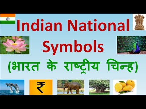 National Symbols Of India In Hindi Indian National Symbols With