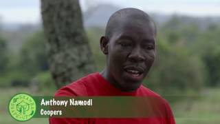 Shamba Shape Up Sn 07 - Ep 9 Dairy Farming, Vegetables, Certified Seeds (English)