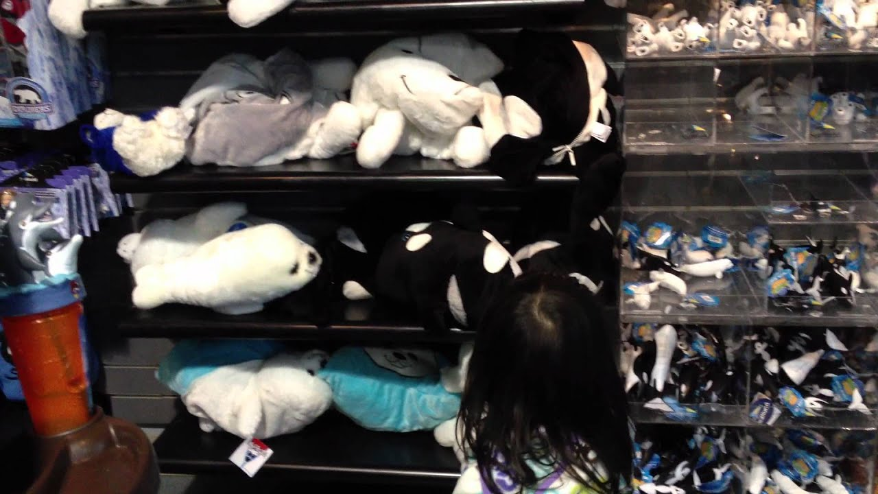 Gift Shop - Sea World San Diego - YouTube