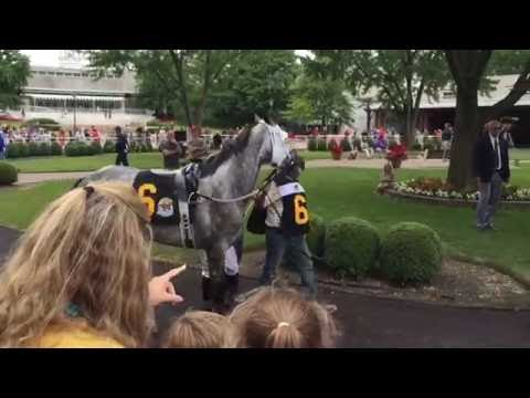 A day at Arlington International Racecourse (Arlington Park) in Arlington Heights, Illinois