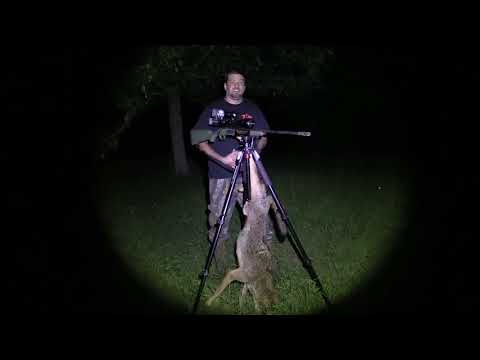 Coyote Hunt With 3D Night Vision Slip On Rifle Scope Unit