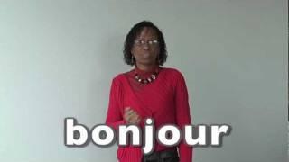 Apprendre la langue des signes LSF : salutations bonjour bonsoir ça va bonne journée