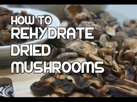 How to Rehydrate Dried Mushrooms - Re-Hydrating Reconstitute - Best Mushroom Recipes