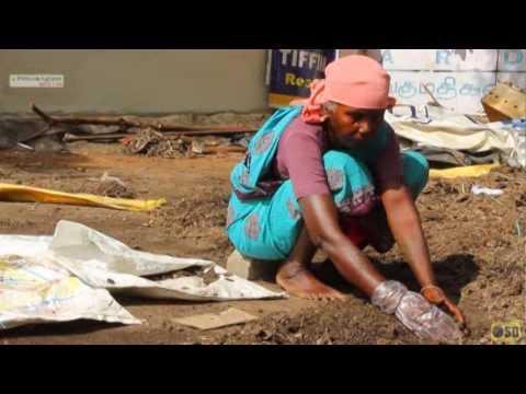 Project by  KT Greens India Madurai  / KT கிரீன்ஸ் இந்தியா, மதுரை / www.ktgreens.com