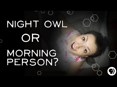 Download Youtube: What Makes Someone a Night Owl?