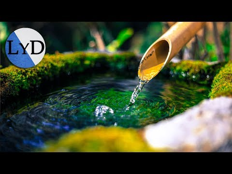 Relaxing Music Sleep | Positive Relaxation Music for Stress Relief and Sleep Meditation Music