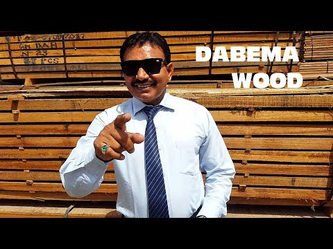 Ep 05 Dabema Timber Market Video Profile Hindi Youtube